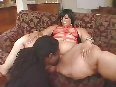 Bbw xxxl black ladies