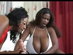 White boy heaven